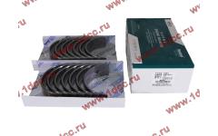 Вкладыши коренные WD618 (комплект) SH фото Севастополь