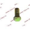 Болт пустотелый М10х1,0 (штуцер топливный) H HOWO (ХОВО) 81500070054 фото 3 Севастополь